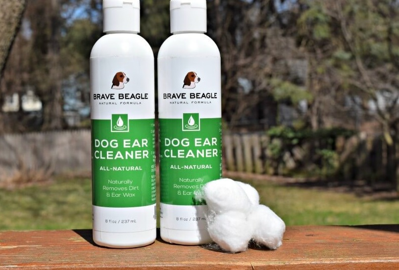 Beagle ear cleaning solution