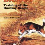 Beagle hunting training books