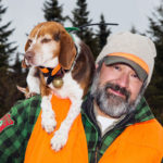 Beagle training for hunting