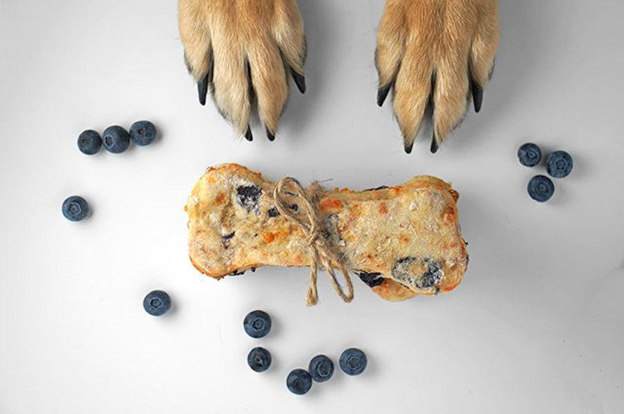 Dog treat recipes for Beagles