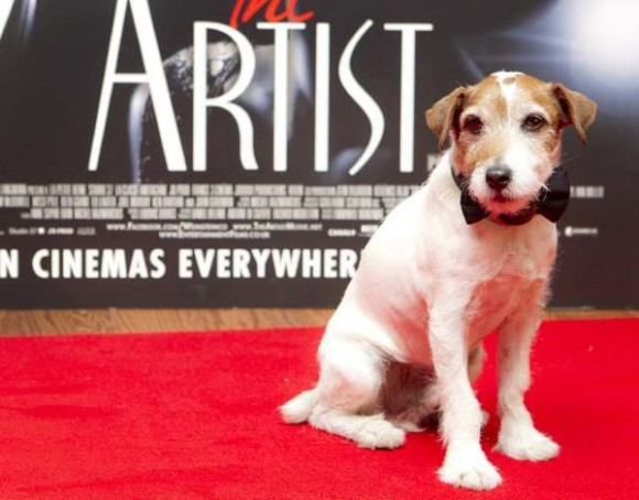 Famous jack russell terrier names
