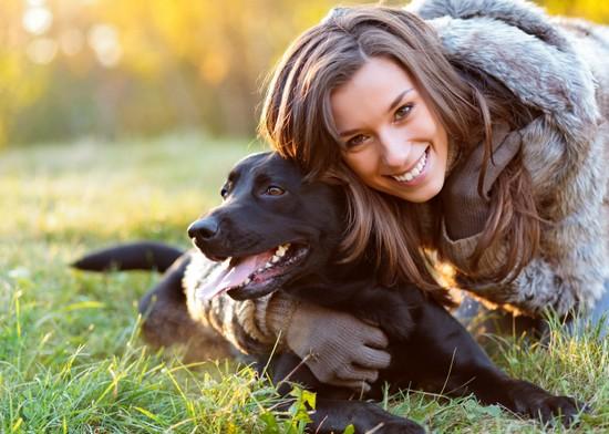 Labrador retriever potty training