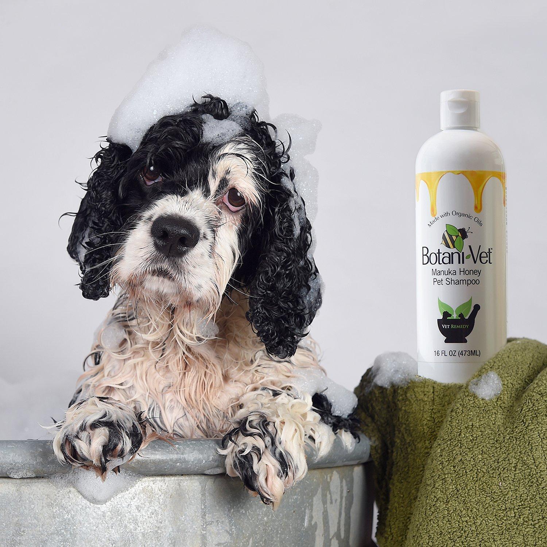Dog shampoo for cocker spaniels