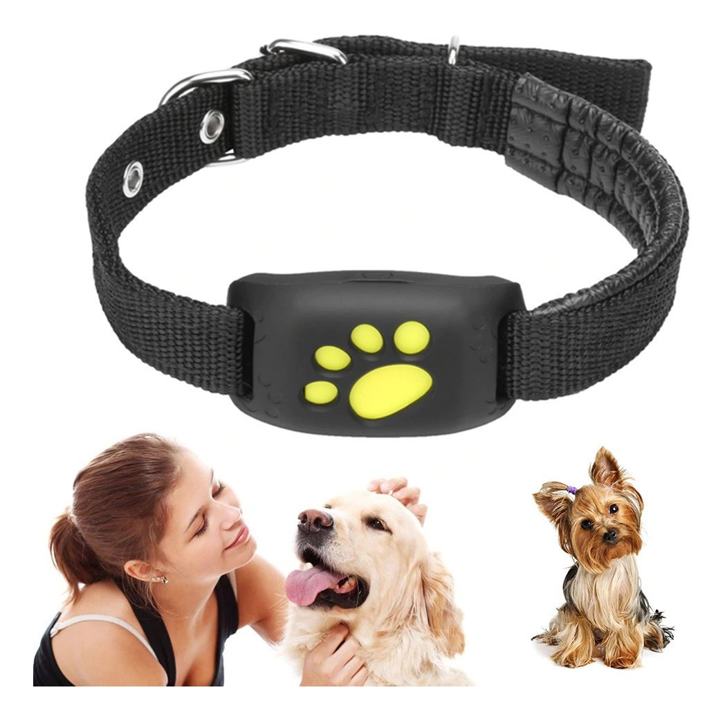 how to choose gps collar for dog