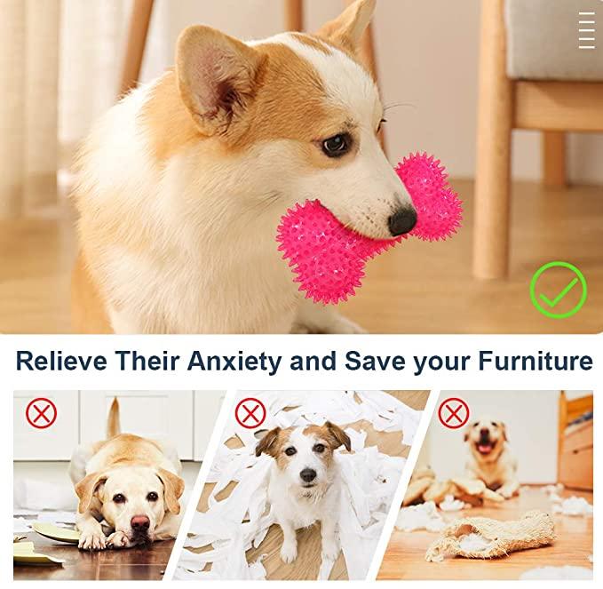 Petper CW-0042 Dog Chew Toys Squeaky Bone