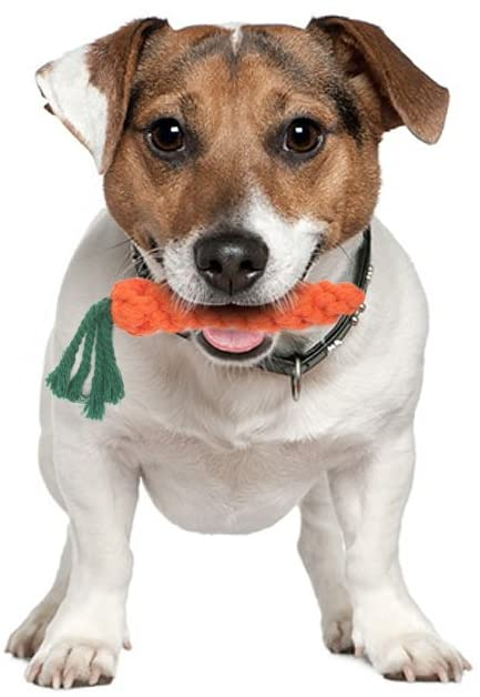 Vivifying Puppy Chew Toys Carrot for small dogs